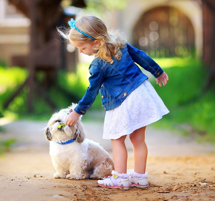 little-girl-play-white-dog